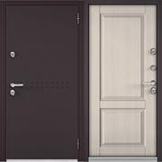 """Дверь входная """"Termo"""" 10TD-1"""
